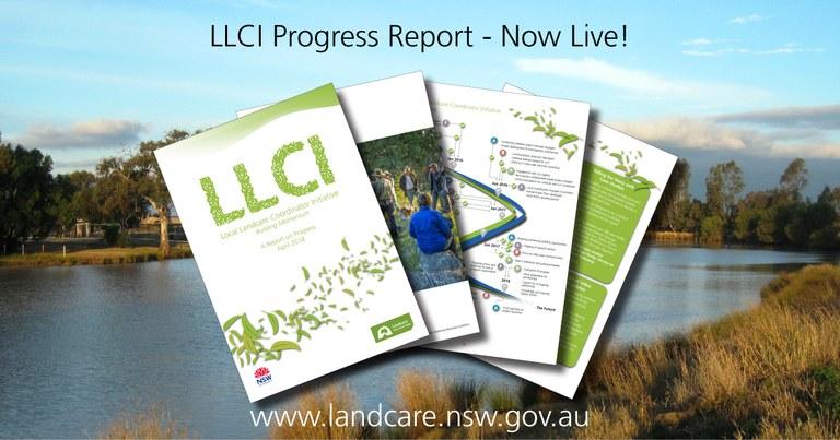 llci-report-banner.jpg