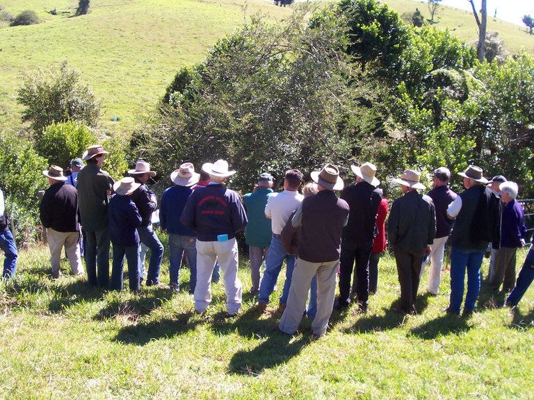 Weed control workshop Dorrigo