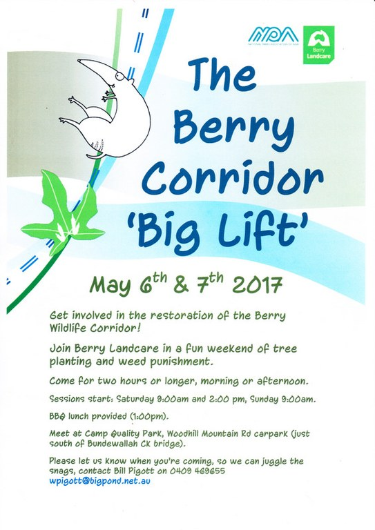 "Berry Corridor and a ""Big Lift"" from UTS Students"