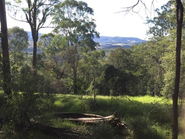View of Escarpment web.JPG