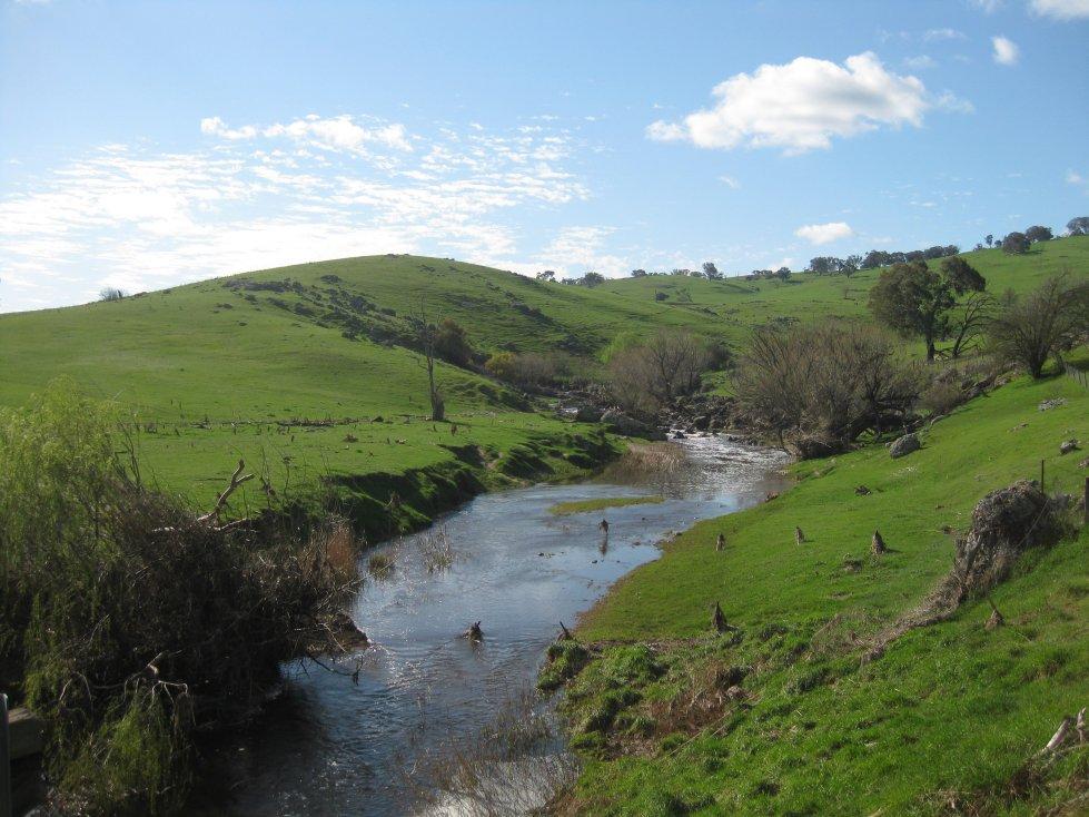 Creek on Black Range Road