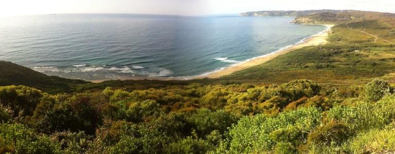 Burwood Beach.jpg