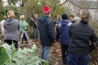 A Taste of Permaculture @ Orange ELF Community Garden - NEW DATE