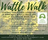 Wattle Walk at Molong