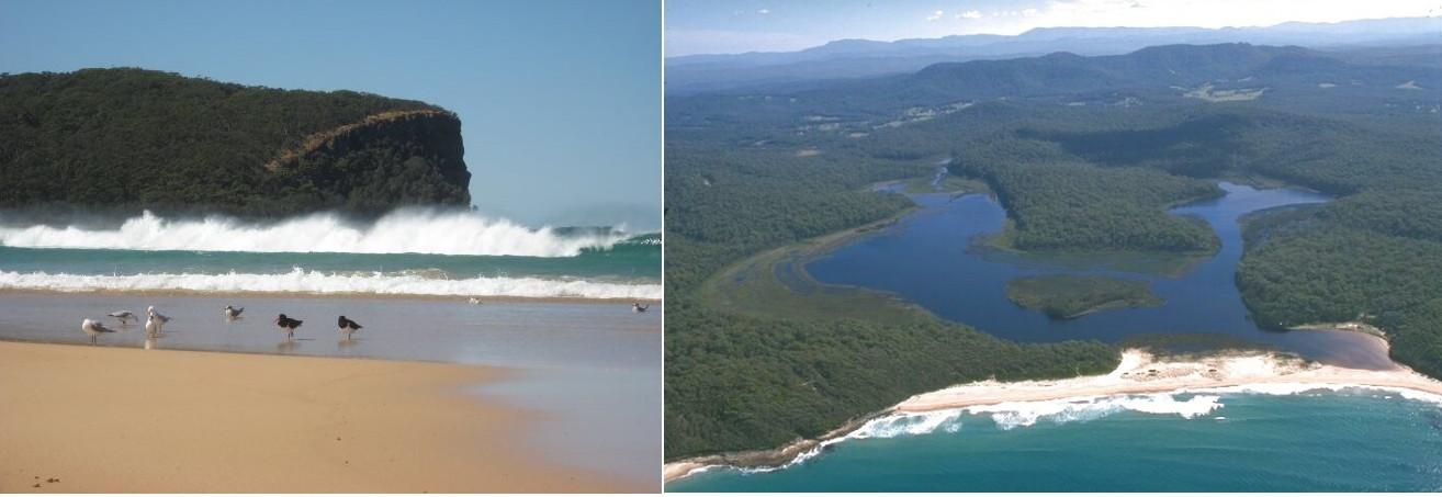 Coastwatchers.jpg