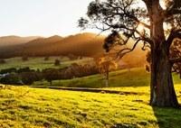 Landcare Goulburn Mulwaree wins Smart Farms Grant