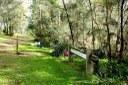 Daranggara Corridors Bushcare - Oakes Rd Reserve 1.JPG