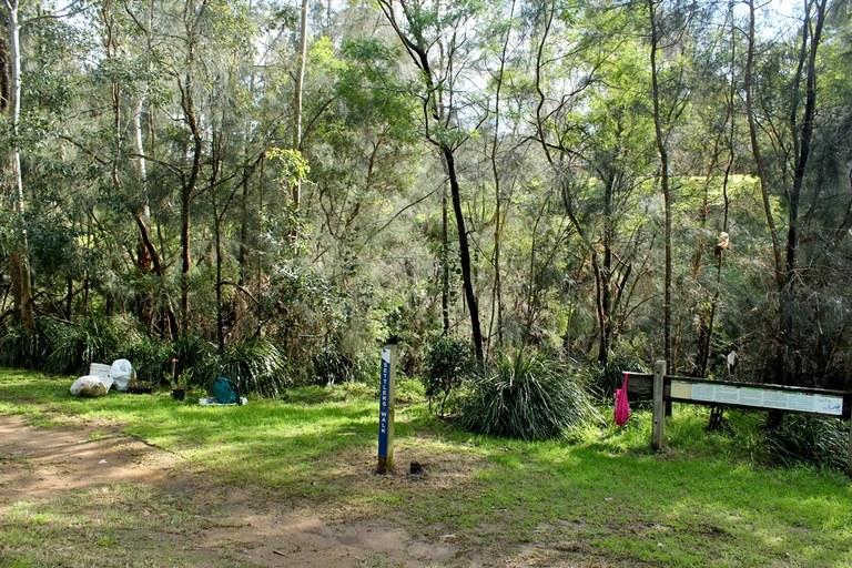 Daranggara Corridors Bushcare - Oakes Rd Reserve 2.JPG