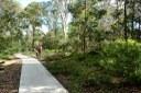 Daranggara Corridors Bushcare - Third Settlement Reserve.JPG