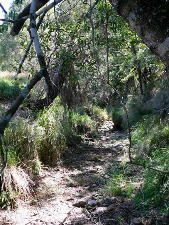 creekbed.jpg