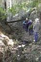Yellowbank Creek bed