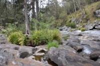 Blicks River, Dundurrabin