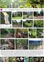 Wompoo Gorge Ecological Restoration