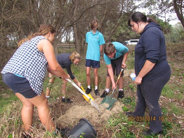 EcoWarriors planting trees Evans Head 2014-03-20 055.JPG