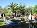 Forster Community Garden.jpg
