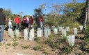 Landcare Australia Corporate Volunteer Group at Middle Head, Sydney Harbour NP.