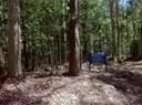 Fountaindale-Ridge-Conservation-Area-Landcare.JPG
