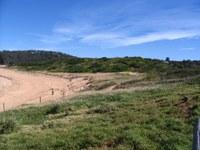 Revegetating and Stabilising Avalon Dunes