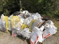 Clean Up Australia 2020