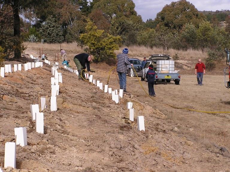 Wamboin hall planting 31 July 2011