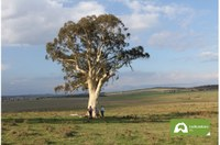 July e-news  Goulburn/Mulwaree Landcare