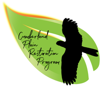 Greater Sydney Landcare is collaboratively working to save the Cumberland Plain Woodland