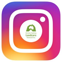 GSLN is now on Instagram!