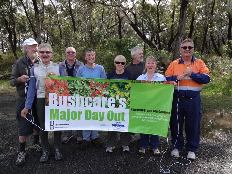 New Bushcare Banner