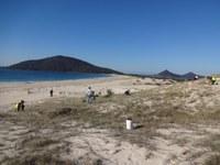 Hundreds of Natives Planted on Hawks Nest Dunes