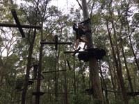 Tree Tops Adventure at Blue Gum Hills Regional Park