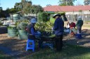 The Habitat community native plant nursery and community food garden