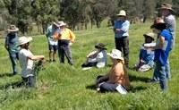 Big Picture Soil Health