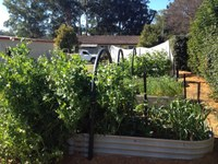 Nabiac Community Garden