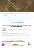 It's a wetland!