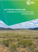Release of 2017 ACT Native Grassland Strategy and Action Plans
