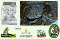 Snakes Alive, 15-21 Jan, ANBG
