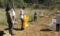 Successful Clean Up Australia Day at Flat Rock Crossing, Yass - Toby Vue