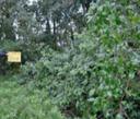 Gibber Point Reserve 2013