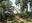 Gibber Point Reserve 2018.png