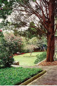 Lisgar Gardens.png