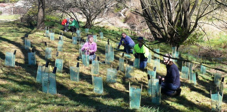 Planting along Statemine Gully for National Tree Day
