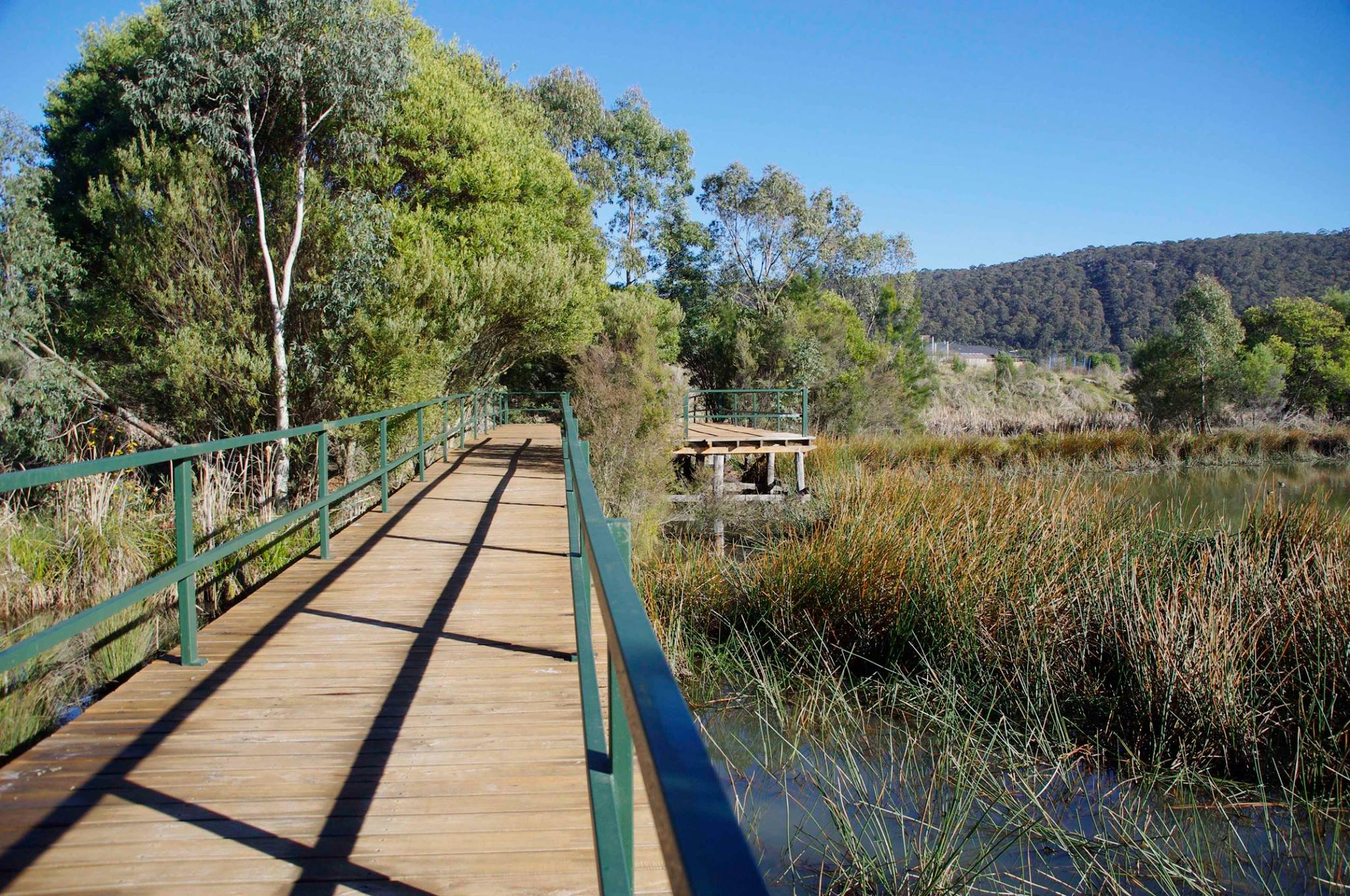 Lake Pilans Boardwalk.jpg
