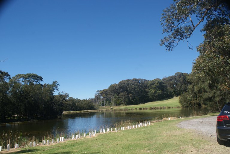 Narooma Little Lake.jpg