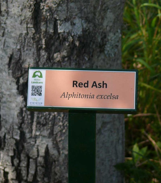 Red Ash sign