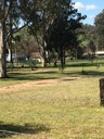 Work For The Dole reinvigorates Community Garden