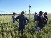 Moulamein Cropping Group.jpg
