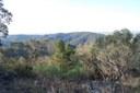 View from Mt Wellesley.jpg