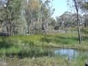 Farm wetland courtsey Jan Thomas