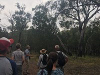 Landcare Coordinator Initiative reforms the Eastern Riverina Landcare Group