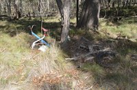 Neville State Forest Clean up and Community Education - Rubbish Dumping.